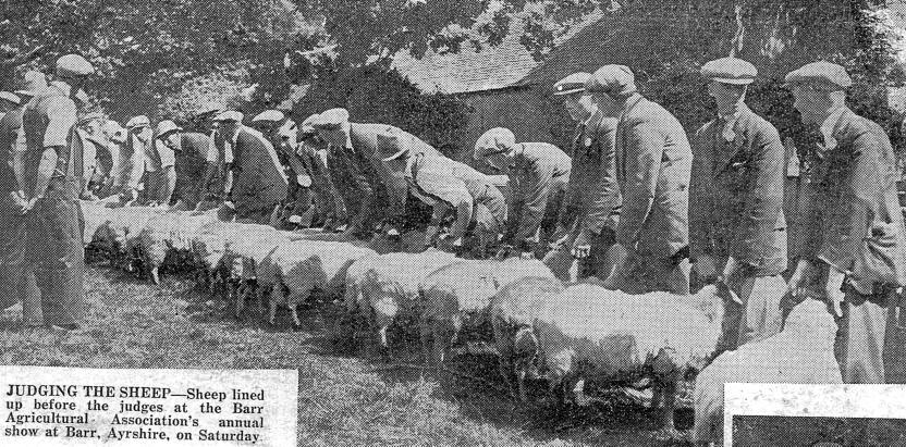 sheepshow in Barr Village