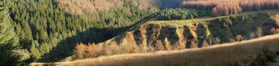 10 - Fairy Knowe Trail